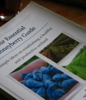 Haskap Honeyberry Book
